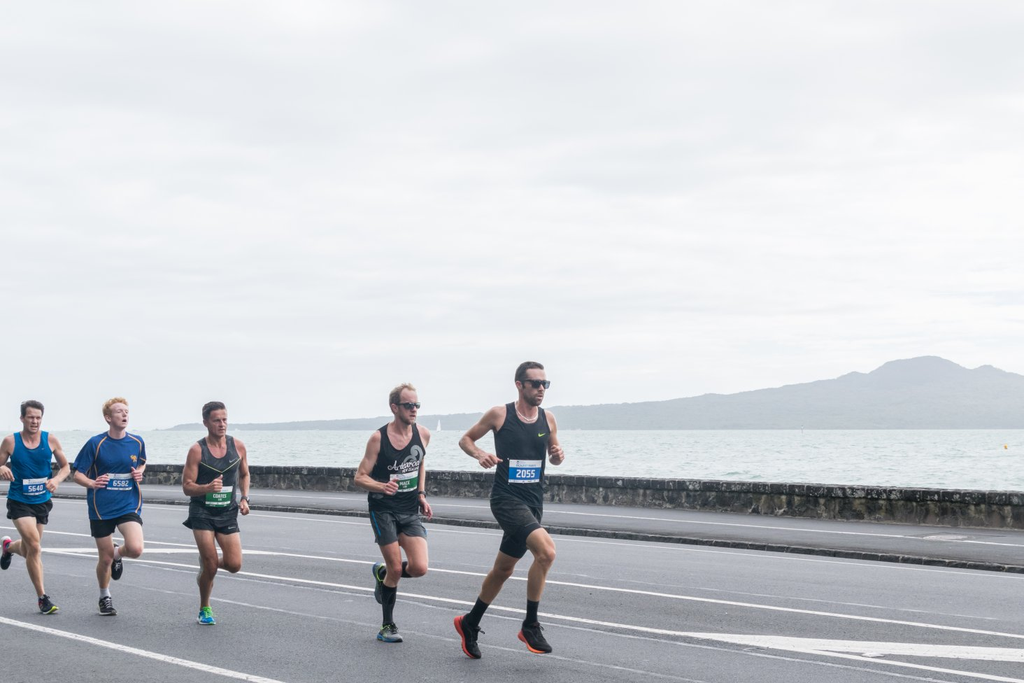 Ports of Auckland Round the Bays is an event for all abilities including competitive runners.