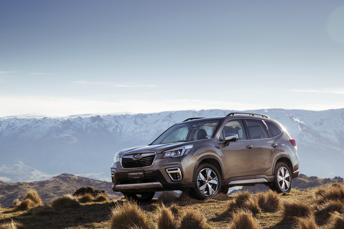 The new generation Subaru Forester SUV has been announced as the New Zealand Car of the Year today.
