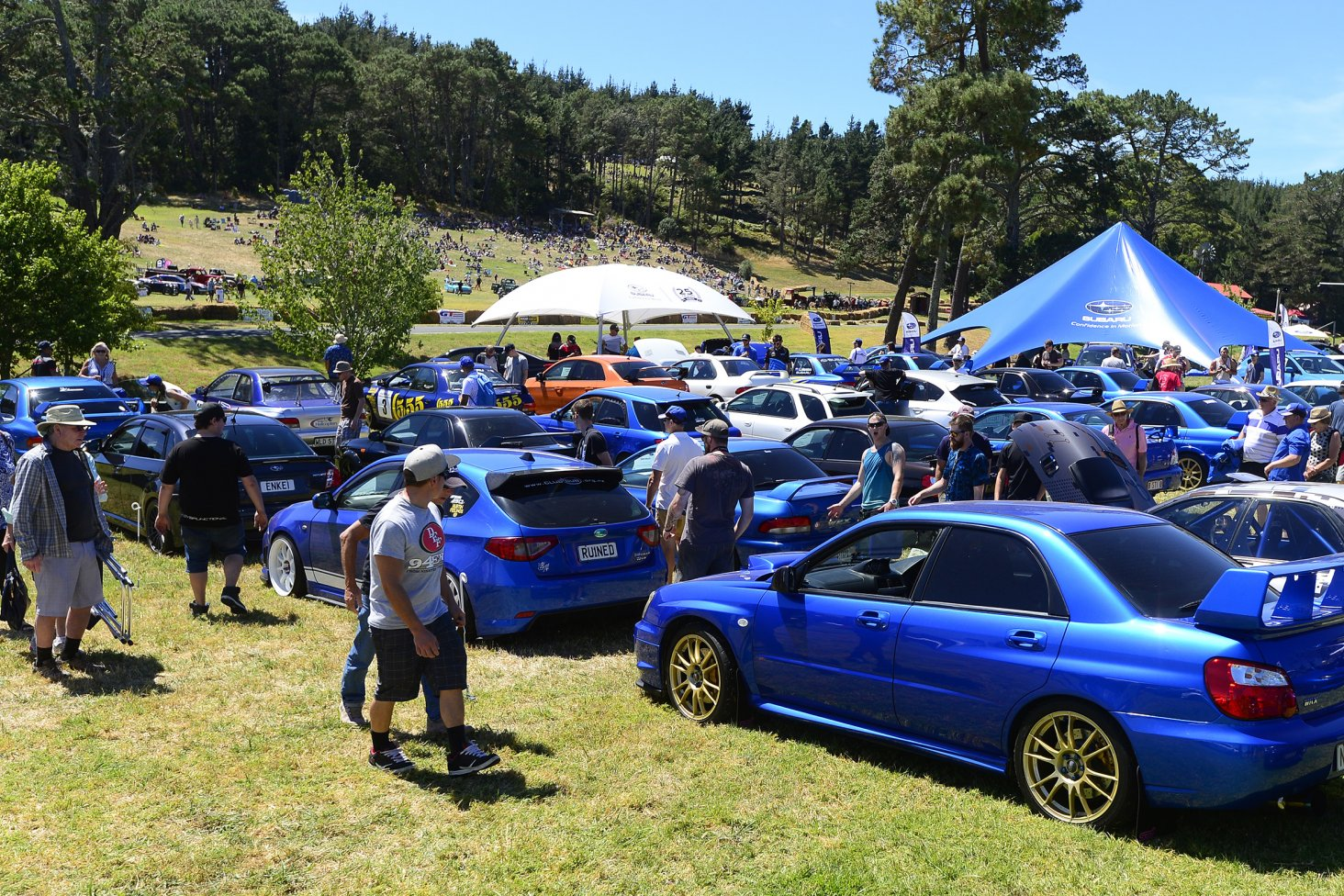 The 25 best WRX competition winners line-up in front of the Subaru tent at the Leadfoot Festival. PHOTO: GEOFF RIDDER