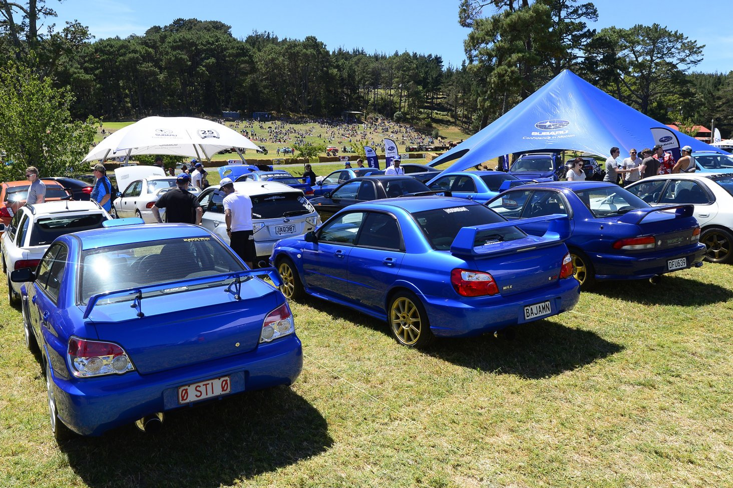 The 25 best WRX competition winners line-up beside the Subaru display tent at the Leadfoot Festival. PHOTO: GEOFF RIDDER