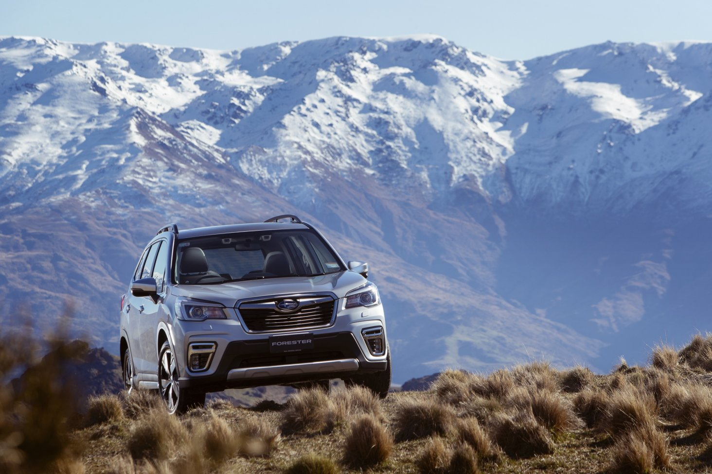 Upgrade Your Family S Fun With The 2019 Subaru Forester Subaru Of