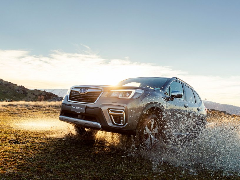 he 2019 Subaru Forester was named the New Zealand Motoring Writers' Guild Car of the Year and by December 31, its sales were up by 18.4% year-on-year.